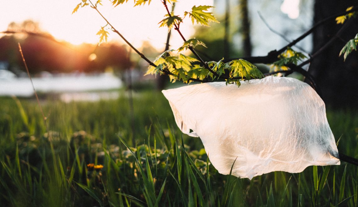 le plastique une seconde vie