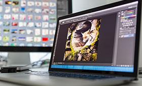 Image Photographie - Le post traitement : sublimez vos photos